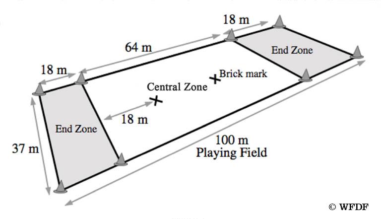 rules_field